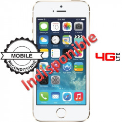 Apple iPhone 5S 32 Go